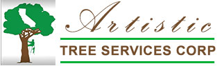 Tree Service and Removal Company West Covina